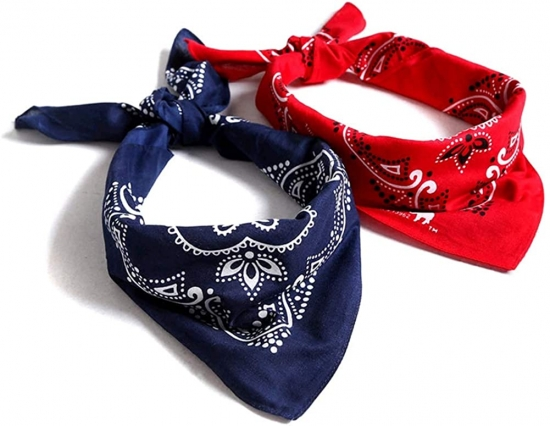 Novelty Bandanas Paisley Cotton